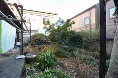 庭の様子。今後入居者さんと手を入れていく予定とのこと。(2014-12-18,共用部,OTHER,1F)