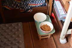 室内に猫が2匹住んでいます。備品は入居者さんの私物です。(203号室)(2021-06-08,専有部,ROOM,2F)