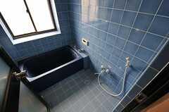 バスルームの様子。(2011-06-03,共用部,BATH,2F)