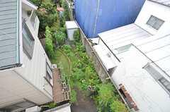 見下ろすとオーナーさん宅の庭が一望できます。(2014-09-01,共用部,OTHER,3F)