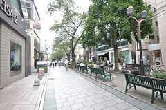 各線・自由が丘駅近くの緑道。(2014-09-01,共用部,ENVIRONMENT,1F)