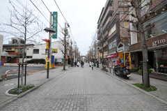 東急大井町線・尾山台駅からシェアハウスから向かう道の様子。(2012-03-08,共用部,ENVIRONMENT,1F)