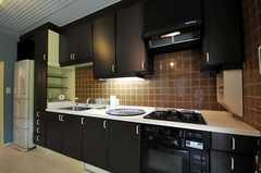 シェアハウスのキッチンの様子2。(2010-08-25,共用部,KITCHEN,1F)