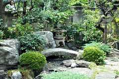 庭の様子。(2010-08-25,共用部,OTHER,1F)