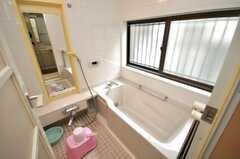 バスルームの様子。(2009-03-24,共用部,BATH,1F)
