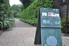 シェアハウスの近くにある、すみれ公園の入口。(2014-06-17,共用部,ENVIRONMENT,1F)