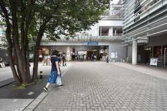 小田急小田原線・成城学園前駅の様子。(2016-09-29,共用部,ENVIRONMENT,1F)