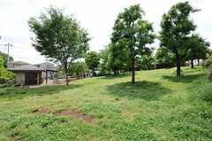 シェアハウス近くの公園の様子。ちょっと傾斜が付いています。(2013-05-13,共用部,ENVIRONMENT,1F)