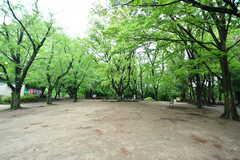 駒場野公園を突っ切るルートが近道です。(2018-04-25,共用部,ENVIRONMENT,1F)