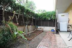 庭の様子2。(2013-06-11,共用部,OTHER,1F)