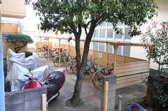 自転車置場の様子。(2013-06-11,共用部,GARAGE,1F)