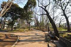 近所の緑泉公園の様子。(2013-06-11,共用部,ENVIRONMENT,1F)