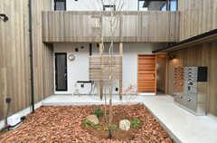 シェアハウスの玄関周辺の様子。ウッドチップが敷かれています。(2020-03-13,周辺環境,ENTRANCE,1F)