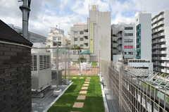 屋上は緑化されています。(2012-10-05,共用部,OTHER,6F)
