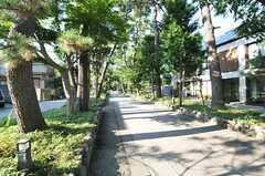 近くにあるお寺の参道。(2013-08-27,共用部,ENVIRONMENT,1F)