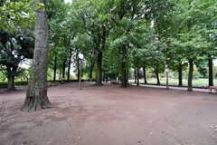 近くの羽根木公園は散歩にもぴったり。(2021-09-04,共用部,ENVIRONMENT,1F)
