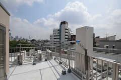 屋上の様子。物干しも可能です。(2010-08-27,共用部,OTHER,1F)