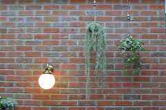 壁面にはレンガ。(2013-02-27,共用部,KITCHEN,7F)