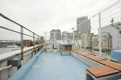 屋上の様子。(2013-02-27,共用部,OTHER,8F)