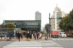 各線・恵比寿駅ガーデンプレイス口の様子。(2013-02-27,共用部,ENVIRONMENT,1F)