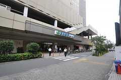 各線・恵比寿駅の様子。(2013-07-01,共用部,ENVIRONMENT,1F)
