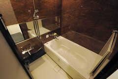 バスルームの様子。(2014-04-02,共用部,BATH,)