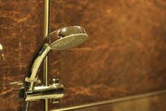 シャワーヘッドの様子。(2014-04-02,共用部,BATH,)
