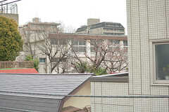 近くの小学校の桜が見えます。(2017-03-31,共用部,OTHER,3F)