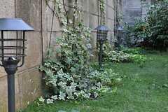 ブロック塀はツタを絡ませて緑化させる予定なのだとか。(2013-08-14,共用部,OTHER,1F)