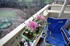 ベランダの様子2。(903号室)(2009-02-02,共用部,OTHER,9F)