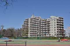 東大側から見たマンションの外観。(2013-03-21,共用部,OUTLOOK,1F)