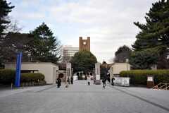 東京大学教養部の正門。(2013-03-21,共用部,ENVIRONMENT,1F)