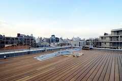 屋上の様子2。渋谷と原宿の街並みを眺めることができます。(2013-02-21,共用部,OTHER,4F)