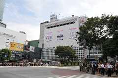 最寄り駅であるJR線・渋谷駅の様子。(2013-02-21,共用部,ENVIRONMENT,1F)