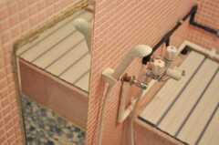 シャワーヘッドの様子。(2009-12-23,共用部,BATH,1F)