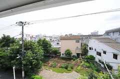 窓からの景色。(301号室)(2013-06-28,専有部,ROOM,3F)