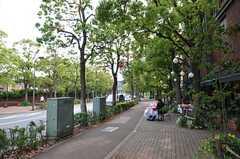 シェアハウスから各線・恵比寿駅へ向かう道の様子。(2014-05-22,共用部,OTHER,1F)