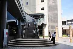 各線・恵比寿駅の様子。(2012-08-29,共用部,ENVIRONMENT,1F)