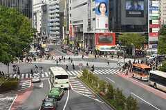 各線・渋谷駅スクランブル交差点の様子。(2017-04-27,共用部,ENVIRONMENT,5F)