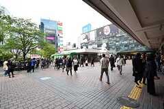 各線・渋谷駅の様子。(2017-04-27,共用部,ENVIRONMENT,5F)