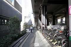 京王線・笹塚駅からシェアハウスへ向かう道の様子。(2011-10-27,共用部,ENVIRONMENT,1F)