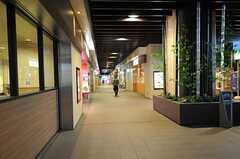 京王線・笹塚駅から続いている商店街の様子。(2011-10-27,共用部,ENVIRONMENT,1F)