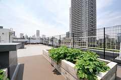 屋上の様子2。(2014-05-30,共用部,OTHER,5F)