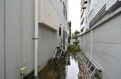 建物の裏手に自転車置き場があります。(2020-10-08,共用部,GARAGE,1F)