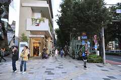 各線・表参道駅へ向かう道の様子。(2013-10-30,共用部,ENVIRONMENT,1F)