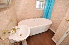 バスルームの様子。(2009-12-08,共用部,BATH,3F)