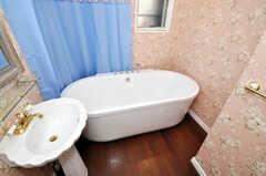 バスルームの様子。(2009-12-08,共用部,BATH,2F)