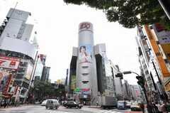 各線渋谷駅前の様子。(2009-07-17,共用部,ENVIRONMENT,1F)