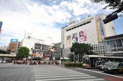 各線渋谷駅の様子。(2009-07-17,共用部,ENVIRONMENT,1F)