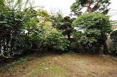 庭の様子。残念ながら庭へは出られません。(102号室)(2011-09-27,専有部,ROOM,1F)